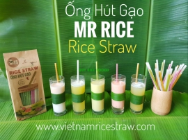 NEW BIO-DEGRADABLE RICE STRAW/ EDIBLE STRAW/ EATABLE STRAW