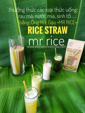 Natural rice drinking straws Mr Rice – Rice Straw eco-friendly sustainable eco-product disposable bamboo edible straws - Mr Rice